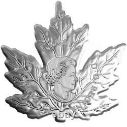 2016 Colored. 9999 Silver Proof Canadian Maple Leaf Coin withCOA and Display Case
