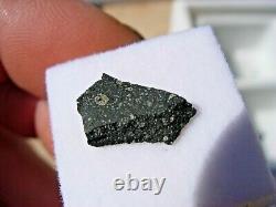 263 G 13x8x2mm Murchison (cm2) Meteorite Fragment Australia Vitrine + Coa