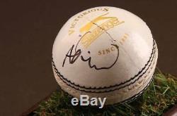 Adil Rashid Signé Balle De Cricket Autograph Display Case Angleterre Souvenirs Coa
