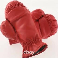 Iron Mike Tyson A Signé Everlast Red Gloves Autographié Psa Coa Dans Le Boîtier D'affichage