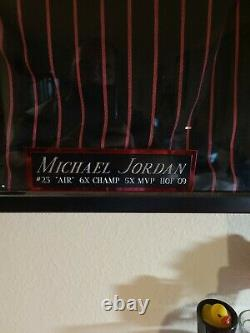 Michael Jordan Autograph Pin Striped Jersey Coa And Display Case With A Mini