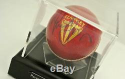 Mitchell Johnson A Signé Cricket Autograph Ball Présentoir Australie Et Coa