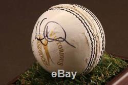 Moeen Ali Signé Balle De Cricket Autograph Display Case Angleterre Souvenirs Coa