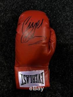 Nigel Benn Signée À La Main Gants De Boxe Dans Un Cas D'affichage The Dark Destroyer Coa