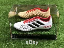 Paulo Dybala, Chaussure De Football, Vitrine Juventus Argentine Coa
