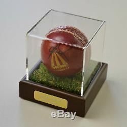 Shane Warne Souvenirs De Coa De La Vitrine D'autographes Signés De L'australie Avec Une Balle De Cricket