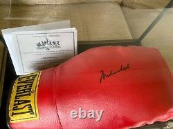 Signé Muhammad Ali Signé Piles De Gants De Boxe De Plaques Coa Dans La Vitrine