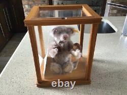 Steiff Danbury Mint Bear Grand-mère Sylvia Avec Cas De Coa Et De Display