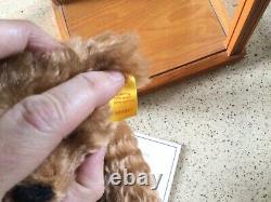 Steiff Danbury Mint Bear Père Chester Avec Coa Et Display Cas
